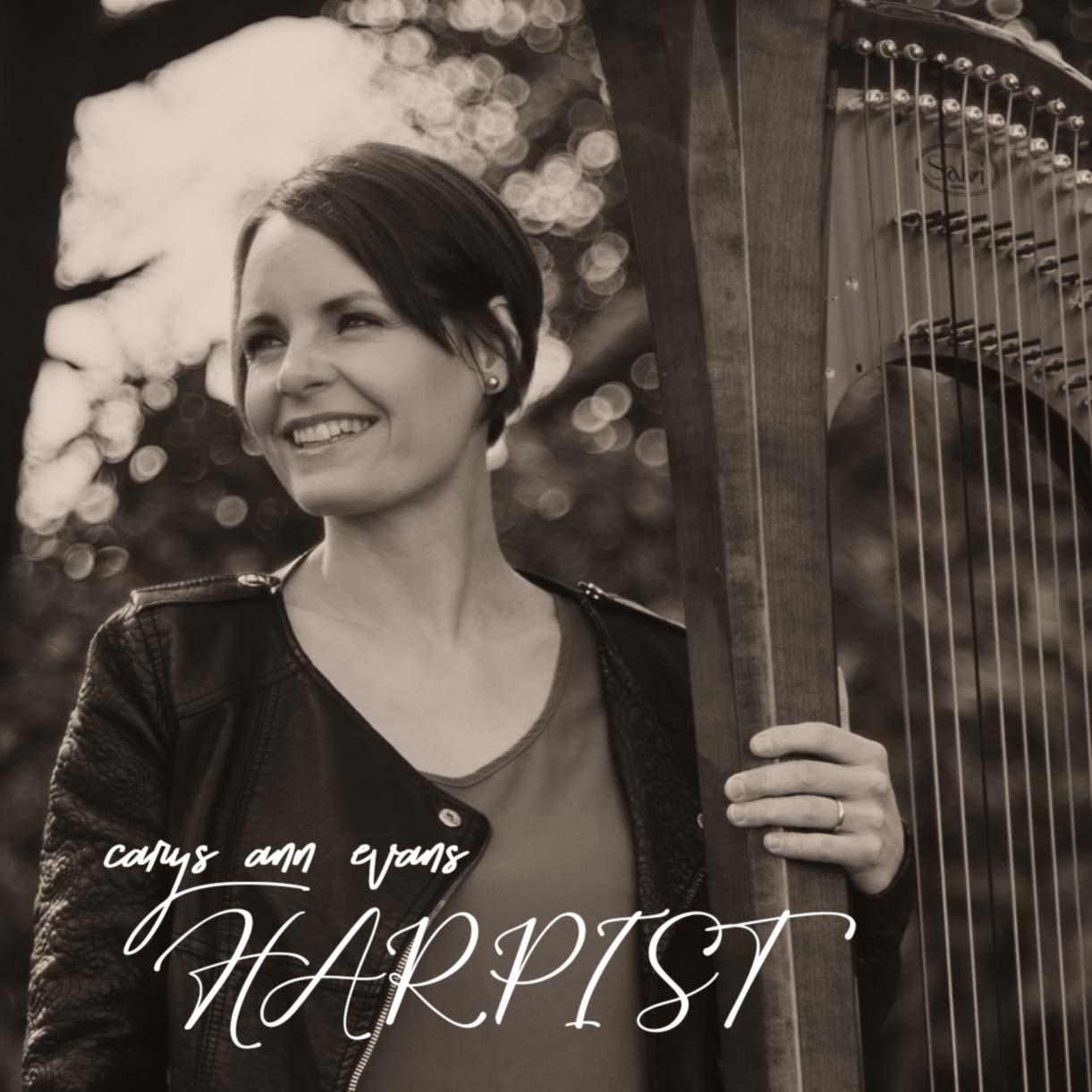 harpist ireland harp player cork carys